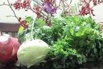 Tìm mua rau không 'tẩm' hóa chất độc hại ở đâu?