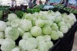 Rau quả Trung Quốc 'lẻn' vào siêu thị
