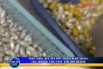 'Du khách' giấu ma túy tinh vi trong vỏ đậu phộng