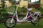 Doanh nghiệp Việt nội địa hóa xe đạp điện