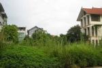 Hà Nội la liệt đất nửa tỷ đồng/m2 bỏ hoang