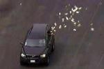 Kẻ cướp ngân hàng ném tiền qua cửa sổ xe chặn cảnh sát