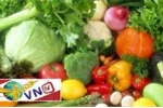 Bất an với chất lượng rau quả