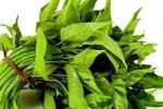 Cách nhận biết rau muống nhiễm chì