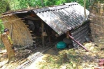 Cuộc sống kỳ lạ của cặp vợ chồng già 'người rừng' giữa đại ngàn Xuân Sơn