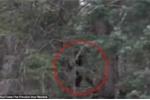 Clip: Nghi vấn quái vật Bigfoot rình rập người đi rừng ở Mỹ