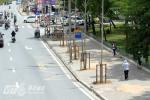 Hà Nội bắt đầu trồng thay thế cây trên đường Nguyễn Chí Thanh