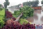 Siêu bão Utor càn quét Trung Quốc