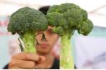 Thuộc ngay bí kíp phân biệt 10 loại rau củ quả Trung Quốc và Việt Nam