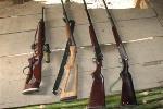 Bắt tàu vận tải biển chở 71 súng săn
