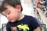Phì cười clip em bé ngủ gật nghiêng ngả trong siêu thị