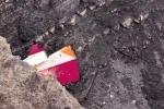 Phi công máy bay Germanwings đã tự tử?