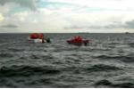 Cứu sống 10 ngư dân Phú Yên gặp nạn trên biển