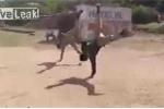 Clip: Màn tập bắn súng như múa đương đại của cảnh sát Ấn Độ