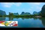 Vẻ đẹp hoang sơ rừng ngập mặn Phù Long
