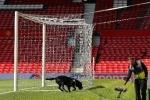 Trận MU vs Bournemouth được hoãn sang ngày nào?