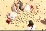 Video: Kinh hoàng cảnh IS xử tử 10 người đồng tính