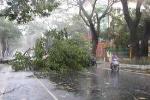 Tổng quan về bão số 3 ở miền Trung
