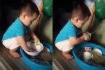 Clip bé trai 2 tuổi cặm cụi rửa bát hút hơn 1 triệu lượt xem