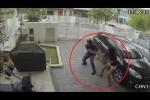 Clip: Cướp túi xách bất thành, bị gái xinh đánh túi bụi