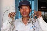 Dị nhân thành Nam: 30 năm không cắt móng tay