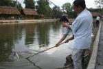 Kinh doanh câu cá: Mơi khách bằng cả mại dâm