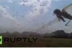 Hãi hùng cảnh hàng trăm ngàn con châu chấu nhuộm đen bầu trời Nga