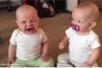 Phì cười clip cặp song sinh tranh giành núm vú giả
