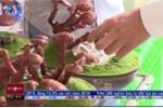 Nấm linh chi bonsai độc lạ hút khách dịp Tết