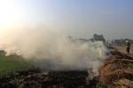 Ảnh: Người Hà Nội bị hun nóng vì khói rơm rạ