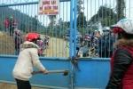 Hai mỏ vàng lớn nhất Việt Nam bị cưỡng chế nộp thuế