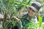 Lang y xinh đẹp săn lùng thảo dược cường dương như Viagra