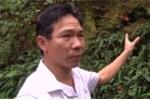 Video: Bí ẩn hầm mộ chất đầy vàng người Tàu để lại ở Hà Nam