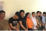 Bắt giữ 19 con bạc sát phạt bằng hình thức cá độ chọi trâu ở Nghệ An