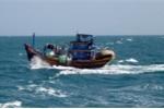 Đang kéo lưới, một ngư dân bị hất văng xuống biển mất tích