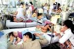 Hà Nội giảm 80% ca mắc sốt xuất huyết, không còn đỉnh dịch hàng nghìn người mắc