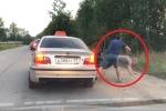Clip: Ném rác ra đường, khách nam bị tài xế taxi quẳng ra khỏi xe