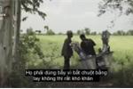 Người Campuchia: 'Chuột nướng ngon hơn cả thịt gà, lợn'