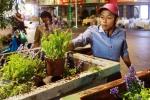 Dân lục thùng rác xin bông khi đường hoa Nguyễn Huệ thu dọn