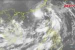 Tin bão khẩn: Bão số 6 áp sát Biển Đông