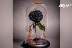 Hoa hồng bất tử trong 'Người đẹp và Quái thú' giá 'cắt cổ' vẫn hút khách