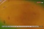 Video: Sự thật chết người về loại nguyên liệu 'thần thánh' chuyên dùng chế nước lẩu bẩn