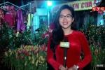 Chợ hoa Hàng Lược, Hà Nội rộn ràng sáng 30 Tết