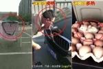 Clip nắng nóng khủng khiếp ở Trung Quốc: Những hình ảnh không tin nổi