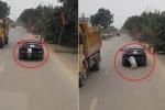 Clip: Lợn đào tẩu ngoạn mục khỏi cốp ô tô và cái kết bất ngờ