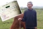 Thanh Hóa: Thu phí chăn thả trâu bò, chủ tịch xã bị kiểm điểm rút kinh nghiệm