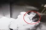 Clip: Cô gái trẻ bị kẻ biến thái cưỡng hôn kinh hoàng trong thang máy