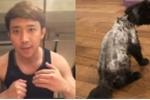 Hari Won quay clip khẳng định mèo cưng 3000 USD 'hết buồn' sau khi bị cạo lông