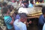 Hàng trăm người dân vây bắt cá sấu khổng lồ dài hơn 5m trong vườn chè