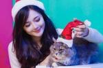 Hot girl Hà thành chụp ảnh với mèo dễ thương đón Giáng sinh